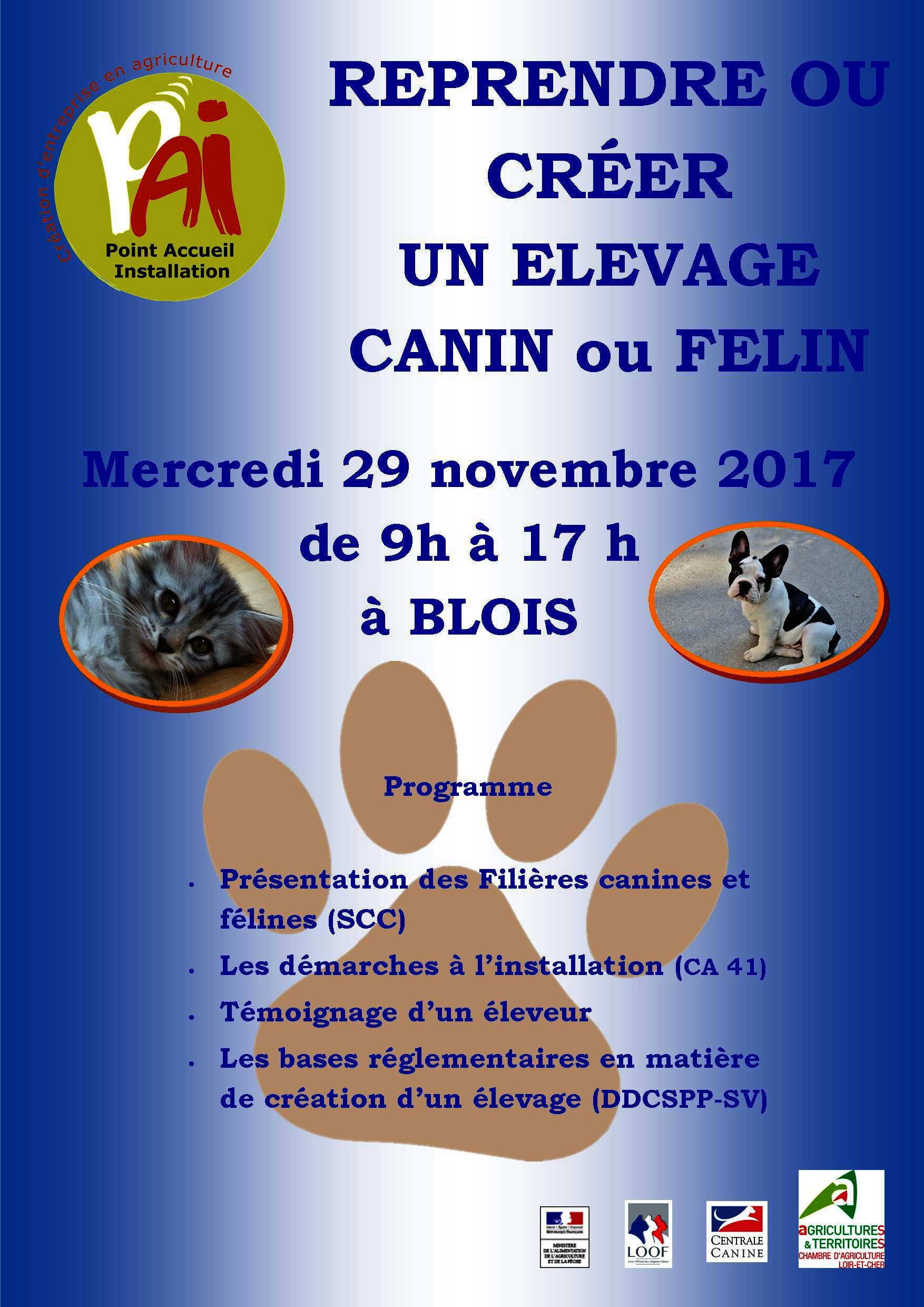 centrale canine region centre